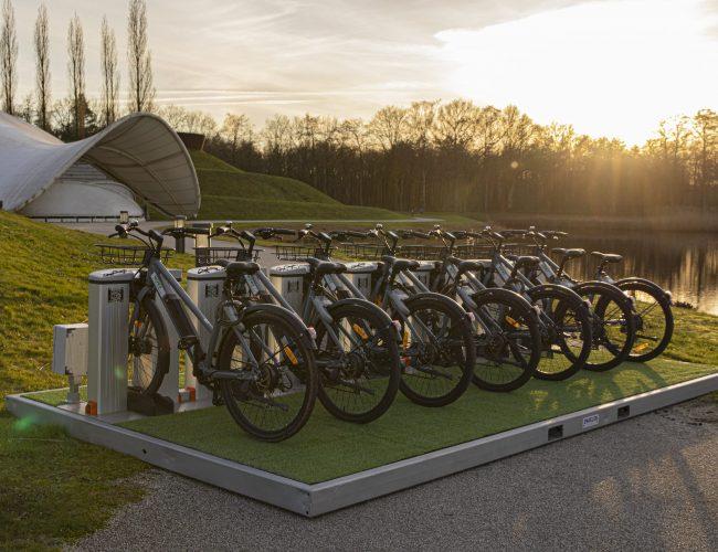 electrische-fiets-plateau